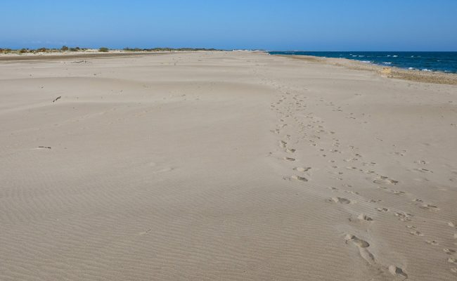 beach-golf-camargue