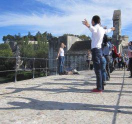 Activité team building : One day in Avignon